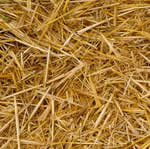 Shredded Wheat Straw